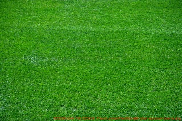 2425981339_d311a737f0_z.jpg?zz=1 Baseball Field Grass