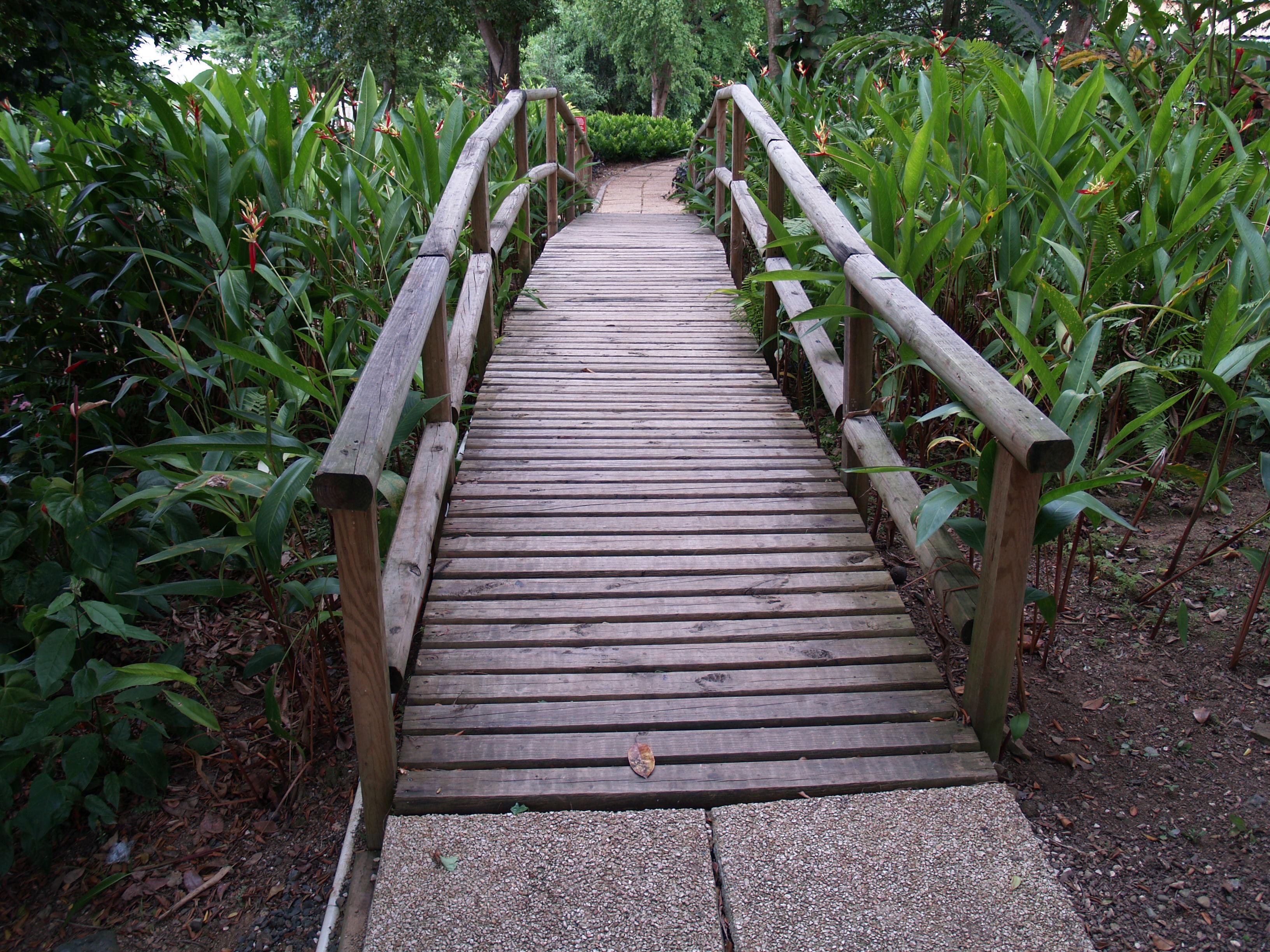 Puente chiquito en el jard n bot nico y cultural de for Bodas en el jardin botanico de caguas