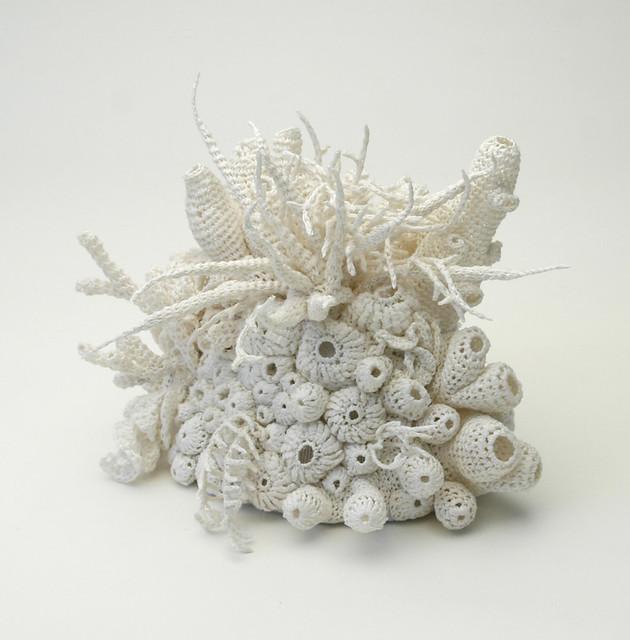 Bleached Coral Garden