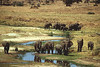 Serengeti10_400