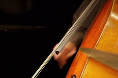 bowed string instrument, classical music, string instrument, double bass, close-up, violist, string instrument,