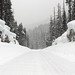 SR 410 Snowbanks