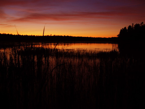 sunset nature minnesota woods scenery scenic september cranelake northwestbay voyageursnationalpark