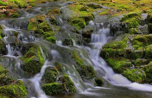 waterfall stream massachusetts brook holyoke cascadebrook diamondclassphotographer flickrdiamond tumblingwater mounttomstatereservation