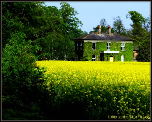 A COUNTRY HOUSE IN TIPPERARY.