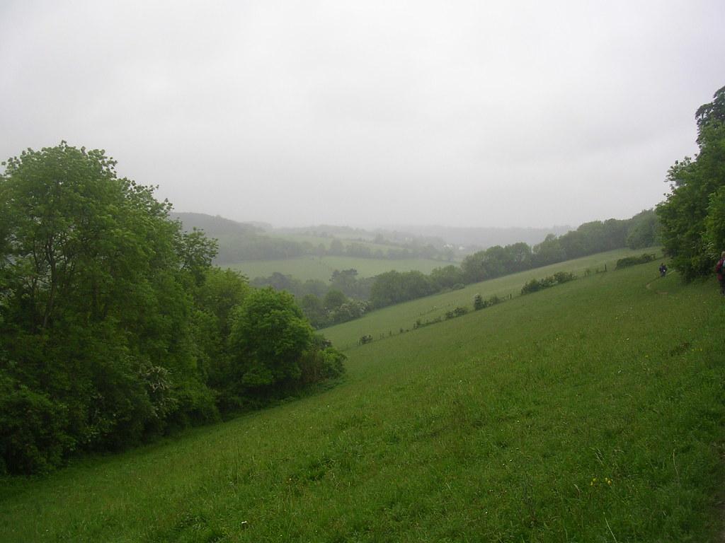 Halliloo Valley Whyteleaf Circular (shorter version)