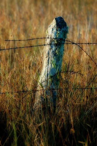 old rural landscape post weathered