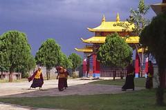 torii(0.0), temple(1.0), temple(1.0), shinto shrine(1.0), place of worship(1.0), shrine(1.0), pagoda(1.0),