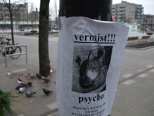 Vermist: Psycho