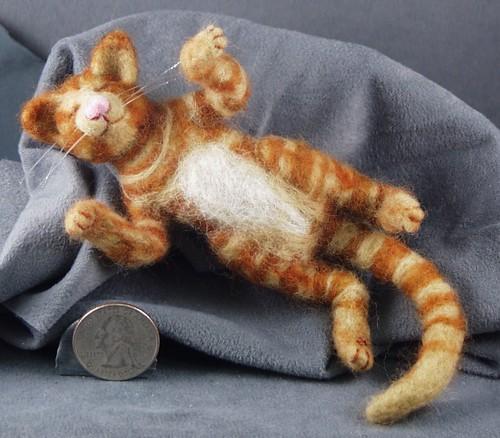 tabbycat1b