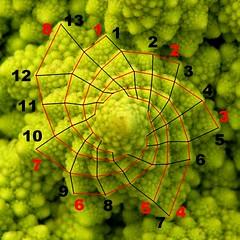 Fibonacci? Col cavolo!