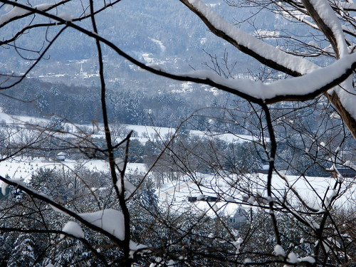 trees winter snow vermont snowcapped valley vt randolphcenter canong9