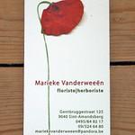 Marieke Vanderweeën thumbnail