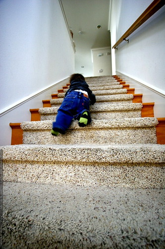 toddler descending a staircase    MG 9514