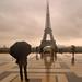 Otoño en París by Inmacor