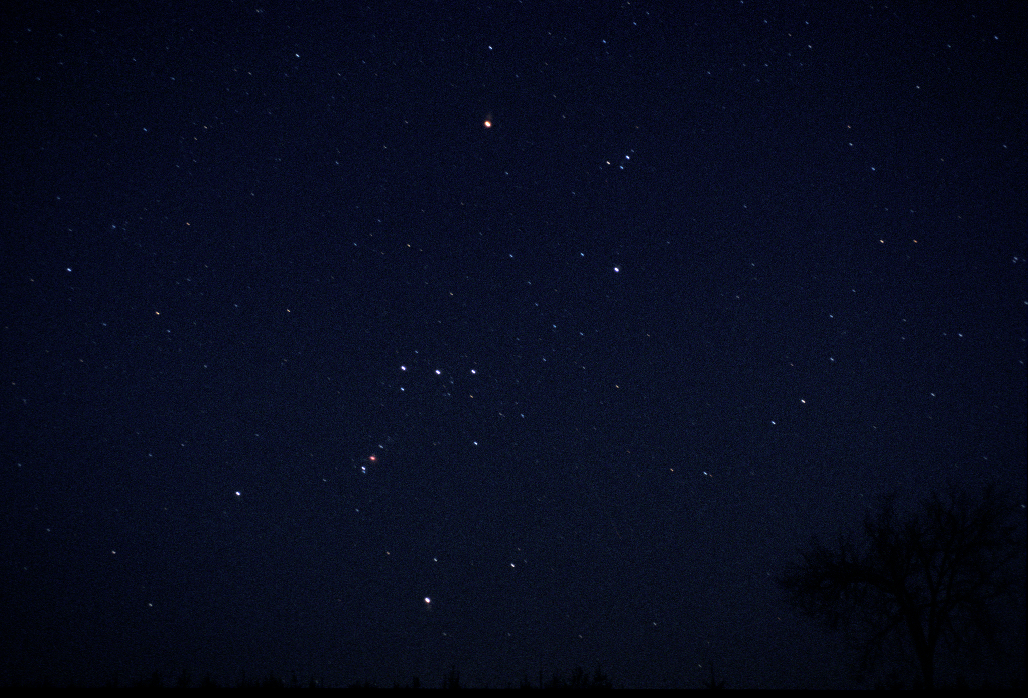 Orion Constellation | Flickr - Photo Sharing!