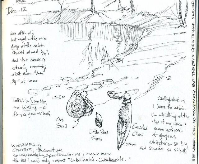 Field Sketch Pond Habitat Flickr Photo Sharing