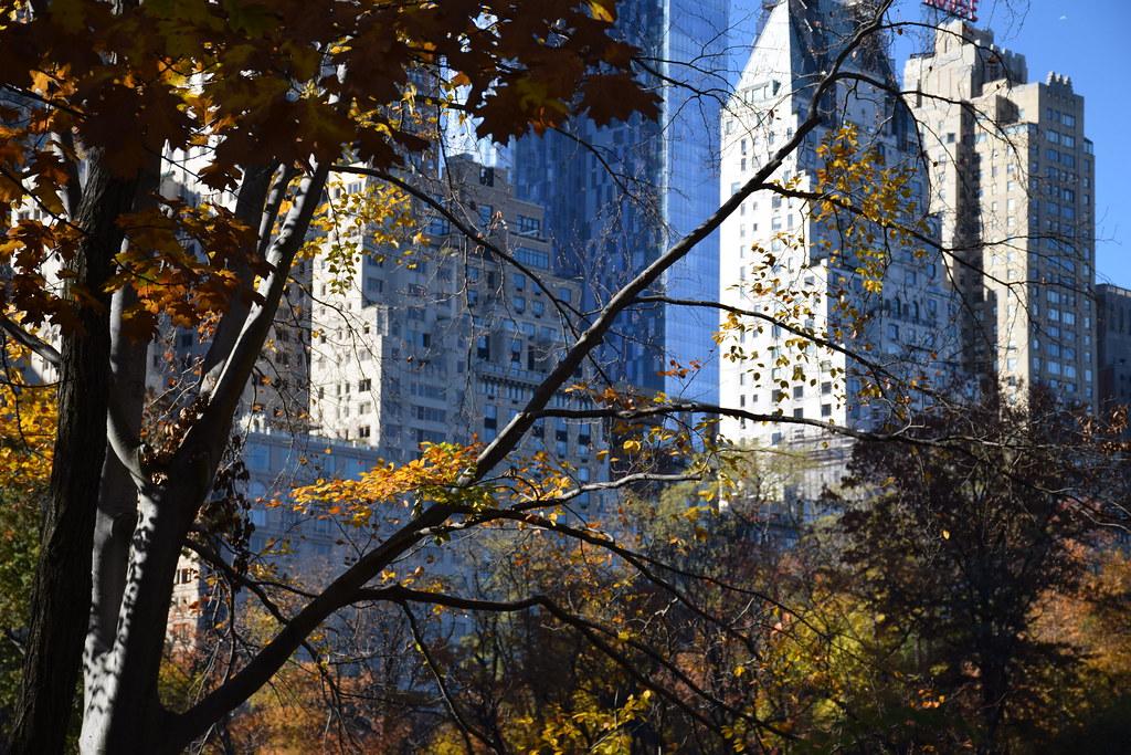Vista de la Quinta Avenida desde Central Park.