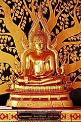 20101213_4353 Temples at San Pa Tong, วัดทึ่สันป่าตอง