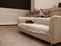 floor, furniture, brown, white, sofa bed, living room, interior design, couch, studio couch, flooring,