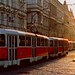 Czech Republic - Prague - Tram at sunrise - panorama