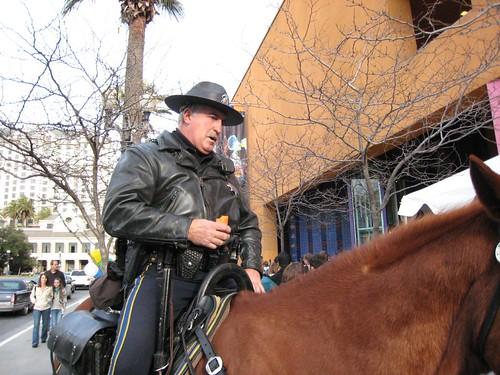 horse, mounted police IMG_1800