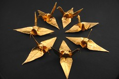 Paper Gold 10 Photos | ring of cranes | 563