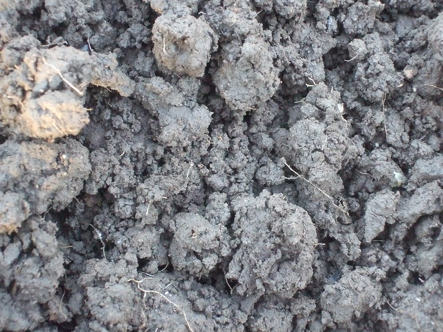 Soil definition meaning for What is meant by soil