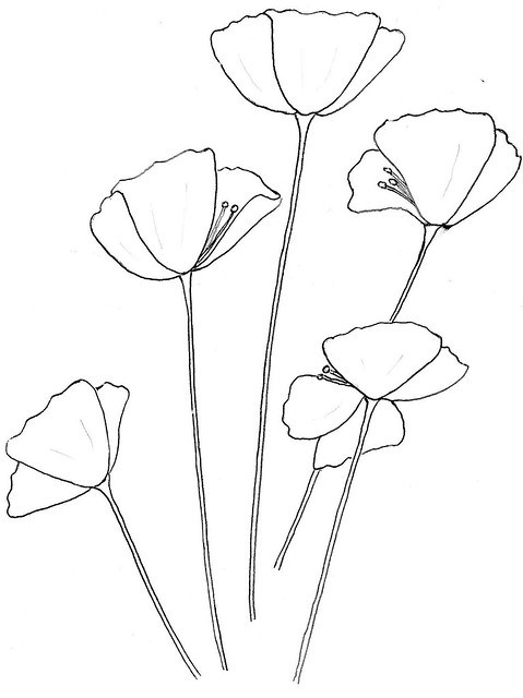 Image Result For State Flowers Coloring