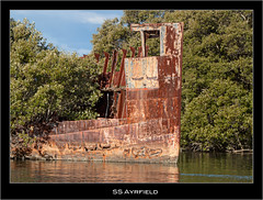 SS Ayrfield