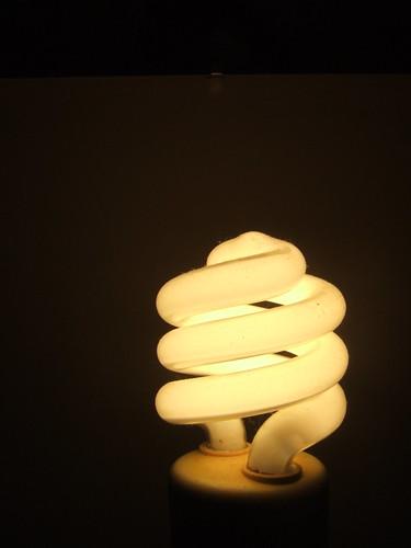 light bulb project365 energystar flourescentbulb