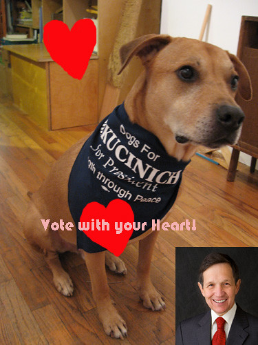 dogs-for-kucinich-001