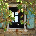 Istria, Momjan