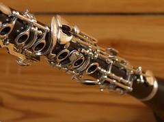 string instrument(0.0), saxophone(0.0), baritone saxophone(0.0), guitar(0.0), euphonium(0.0), reed instrument(1.0), oboe(1.0), western concert flute(1.0), wind instrument(1.0),