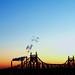 Sunrise over  Queensboro Bridge    roygbiv by astoria4u