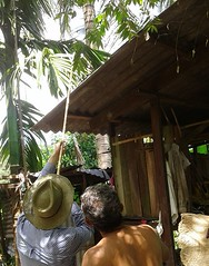 Orang Asli village in Broga, Hulu Selangor - 15 Feb 2017