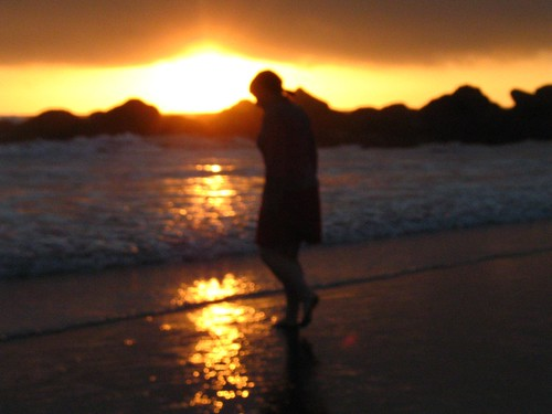 ocean sunset silhouette coast blurry roadtrip pacificocean outline seashore lynaestraw