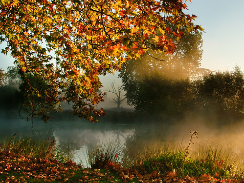 autumn lake sunrise dawn buckinghamshire deadtree list slough berkshire kevday langleypark langleycountrypark