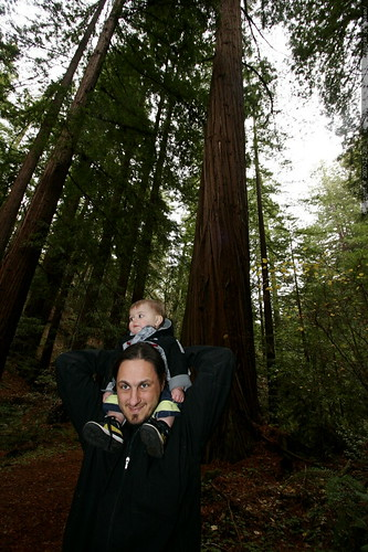 sean & sequoia under the heritage grove redwood trees    MG 7989
