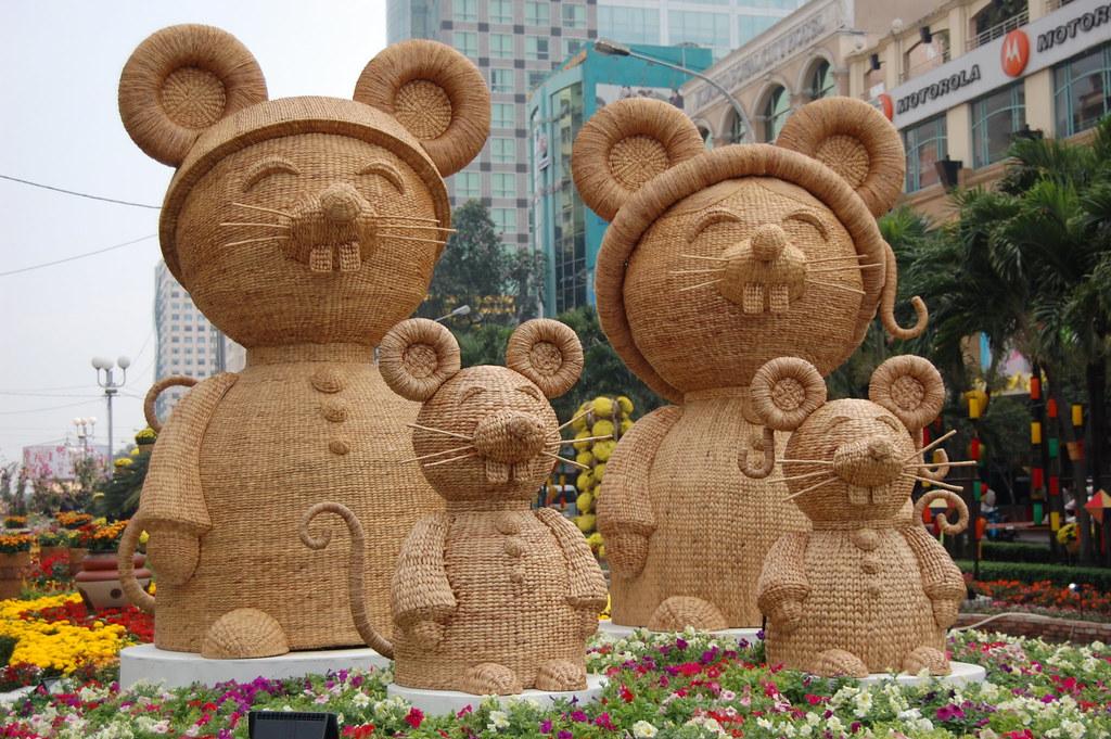 Kết quả hình ảnh cho gia đình chuột
