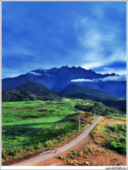 Mesilau Desa Dairy Farm - Kundasang Sabah