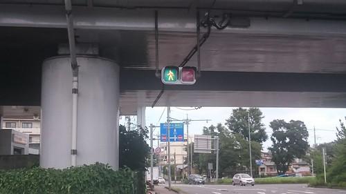 初めて見た横型歩行者信号灯。グンマー国には変わった信号多いなぁ