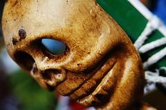 Skull, little skull