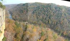 tree, geology, terrain, ravine, biome, escarpment, cliff, mountainous landforms,