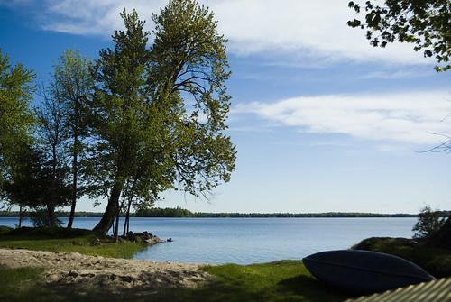 lake ontario tree spring pentax ottawa mississippilake cans2s k200d