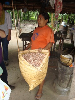 first steps for chocolate production