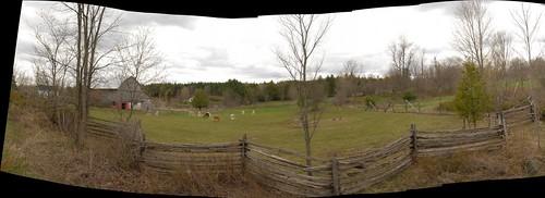 autostitch panorama ontario canada rural fence nikon farm hood alpacas alpacafarm splitrailfence farmfence lanarkcounty watsonscorners