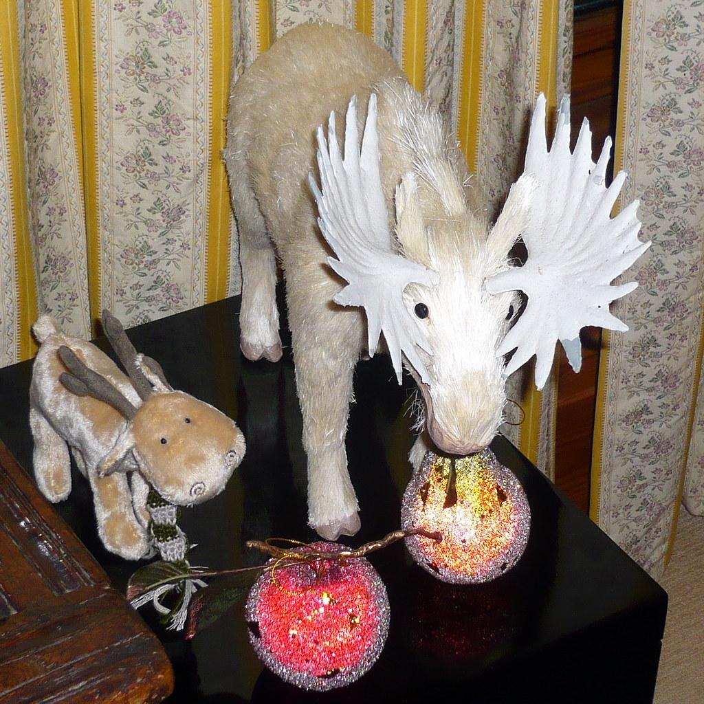 Moose Christmas Decoration Christmas Decoration