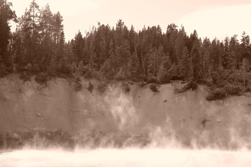 Parque Nacional Yellowstone: Norris Geyser, vapor de agua saliendo del lago bajo el bosque parque nacional yellowstone - 2513491647 82bdf2bd20 o - Parque Nacional Yellowstone, cómo visitarlo en dos días