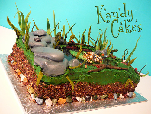 Frog Pond Cake by Kandy Cakes
